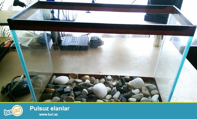 Akvarium satılır. Hava verən filteri ilə birlikdə....