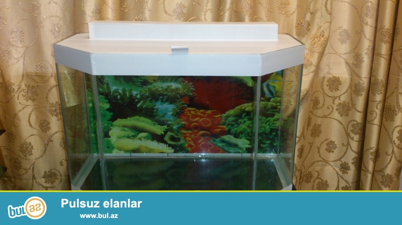 Akvariumun uzunlugu 50 sm hun 33sm on 30 sm litr 41...