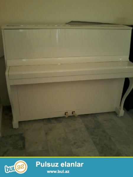 alman pianosu vaqner satiram