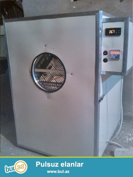 Inkubator satisi Bakida <br /> Avtomatlaşdırılmış...