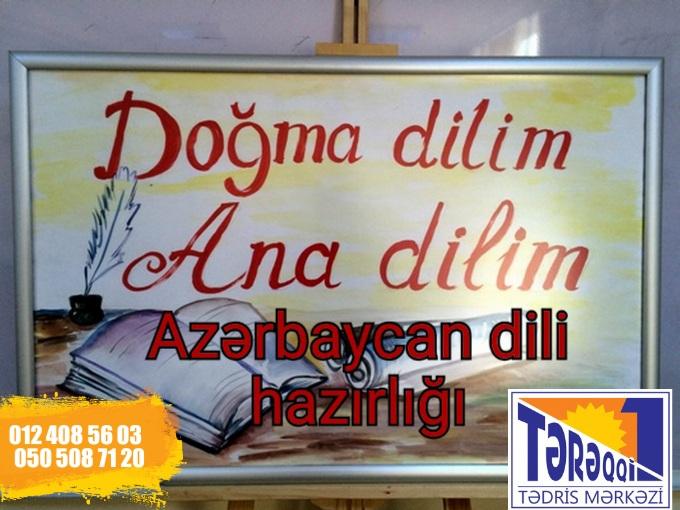 Azərbaycan dilindən online hazırlıq Məktəblilər,
