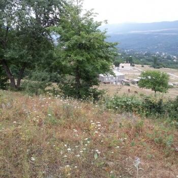 Quba Rayon Qəcreş kəndidə 76 Sot Torpağ satıram Suyu Qazı