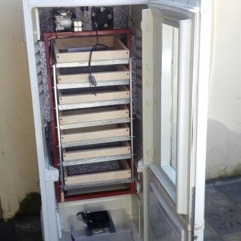 AHMA inkubatorlari en yeni reqemsal idare etme bloku,tam