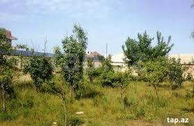 AES Tikinti şirkəti nəznində Nefçilər ərazisində Neolit