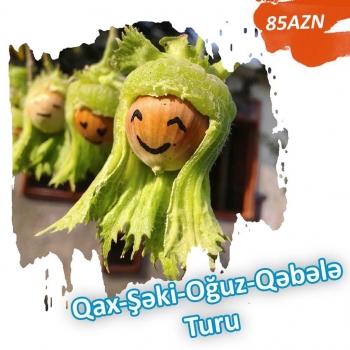 QAX - ŞƏKİ - OĞUZ - QƏBƏLƏ TURU Tur dəqiq olacaq. ● Qiymət