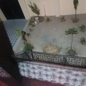 Suraxanı rayonu Qaraçuxur qəs.Əsas yolun kənarında, Aura