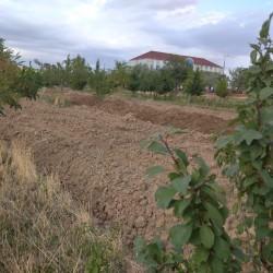 Qobustan şəhərində Yeni Massivdə yerləşən torpaq sahəsi çox
