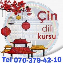 World Universal Consulting Group Çin dili kursu Dərslər
