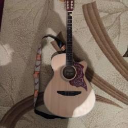 """""""Gonzalo""""həm akustik, həm də klassik elektro gitara."""