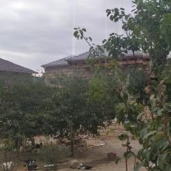 5 sotda həyət evi.Fatmayı kəndinin mərkəzində.Bütün
