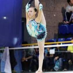 Gimnastika, Yoga ve diger idman növlerini profesyonal