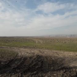60 hektar sahəli təsərrüfat satılır - Çıxarış var 28