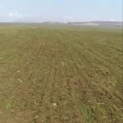 100 hektar ərazi satılır İsmayıllı rayonu ərazisində Münbit