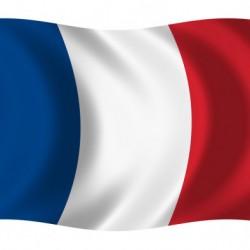 Fransız dilini sıfırdan başlayaraq öyrədirəm. Həftədə 2