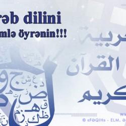 Ereb dili oyrenmek isteyenlerin nezerine -Danisiq dili