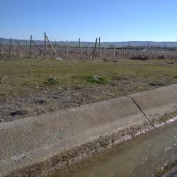 10 hektar yer satılır Şəki şəhəri xüsusi mülkiyyətdir 6
