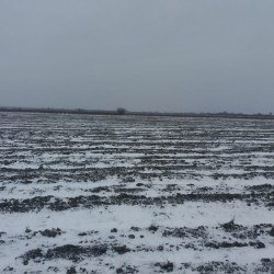 30 hektar Ərazi satılır Xaçmaz rayonu ərazisində Xüsusi