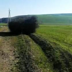 65 hektar münbit torpaq satılır Su və işıq yanında,Çıxarış