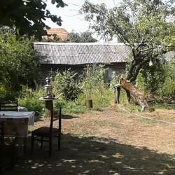 Qax rayonunun QUM kəndində 20 sotluq həyət satılır