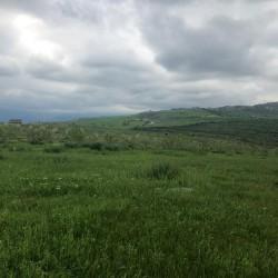 200 hektar Ərazi satılır İsmayıllıda xüsusi mülkiyyət 1.7