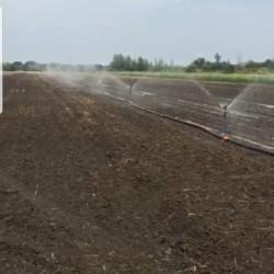 Boru cileyici 5 hektarliq satilir qiymeti razilawma yolu