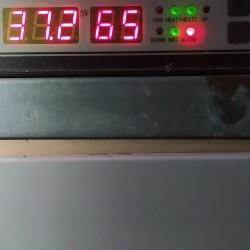 750 tutumlu inqubator .avtomat.butun qus novlerinin