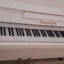 Pianino köklənməsi təmiri