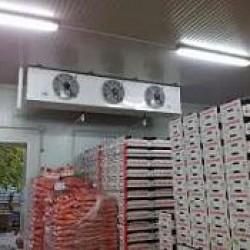 Tecili Hazir biznes - Qida Sektoru ucun Soyuducu Ambar