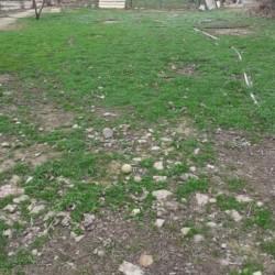Quba rayonu Bagbanli qəsəbəsində Kupcali(Çıxarıslı) fərdi
