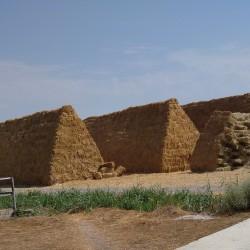 Əkin sahələri satılır 20 hektar İvanovka,İsmayıllı ray.