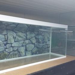 İstənilən ölçü və dizaynda akvariumların hazırlanması