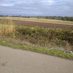 500 hektar torpaq satılır Ağsu rayonu ərazisində Xüsusi