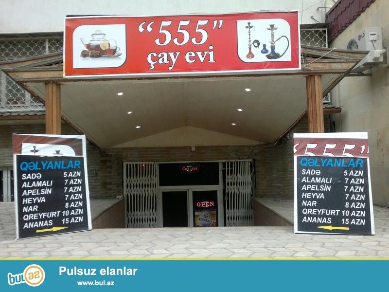 TECILI 555 Cay Evi satilir verilir. Her bir şeraiti vardir...
