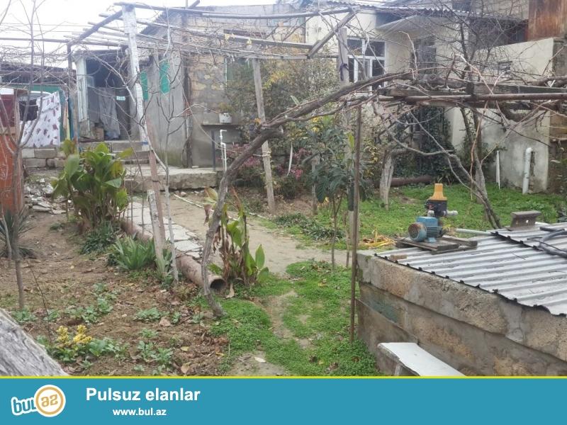 Bineqedi rayonu Bineqedi qesebesinde 182 nomreli mektebin yaninda 4 sotun icinde tikilen 2 ev,  cemi 140kvm 4 otaqli 2 metbex, 2 hamam...