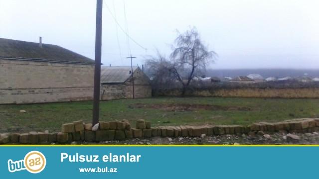 Hacıqabul Rayonu 2-ci Udulunun Tava kəndində ümumi ərazisi 1 hektar olan torpaq sahəsin satılır...