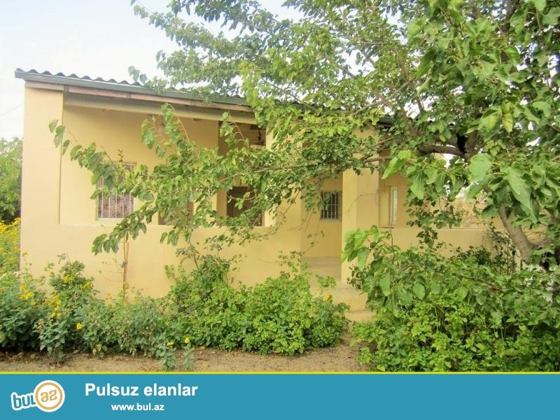 Очень срочно! В посёлке Вишнёёвка 2  по дороге Маштага - Бильге  с правой стороны,  продается  2-х комнатный частный дачный дом  расположенный  на 25 сотках ...