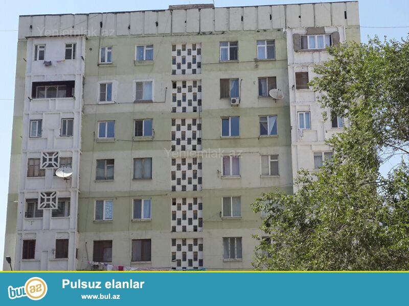 ganclikda 7 martabali binanin orta martabasinda pod mayak 115 kvadrat metr va 84 kvadrat metr 2 otaqli ev satilir ...