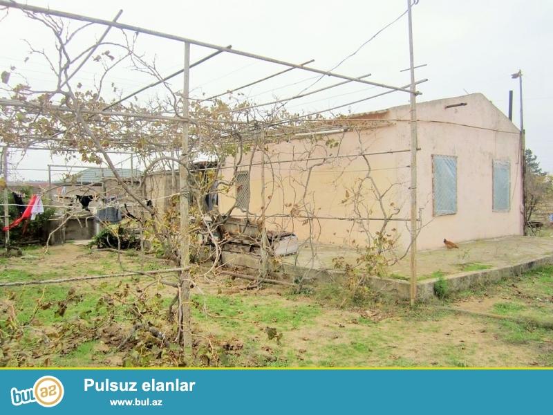 Очень срочно ! В поселке Шувалан, вниз от  зияретгах продается 1-но этажный, площадью 60 квадрат, 3-х комнатный частный дом , расположенный на 16-ти сотках земли...
