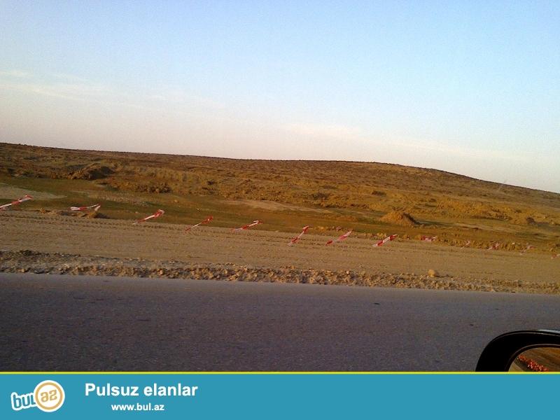 7 hektar bos torpaq sanadlari qaydasinda tecili satilir 700 sotun hamisi 120 000 azne ...