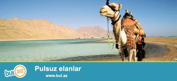 Misirdə dincəlmək istəyənlər üçün sərfəli təklif!!!<br /> Sharm El Sheikh turları 296 AZN-dən başlayan qiymətlərlə<br /> <br /> Regency & Lodge Hotel 3*-296 AZN (səhər yeməyi ilə)<br /> Luna Sharm Hotel 3*-297 AZN (səhər yeməyi ilə)<br /> Royal Oasis Naama Bay Hotel & Resort 4*-311 AZN (səhər yeməyi ilə)<br /> <br /> Luna Sharm Hotel 3*-312 AZN (səhər və şam yeməyi ilə)<br /> Tropicana Tivoli Hotel 4*-316 AZN (səhər və şam yeməyi ilə)<br /> Royal Oasis Naama Bay Hotel & Resort 4*-325 AZN (səhər və şam yeməyi ilə)<br /> Sharm Inn Amarien 4*-333 AZN (səhər və şam yeməyi ilə)<br /> Mexicana Sharm Resort 4*-334 AZN (səhər və şam yeməyi ilə)<br /> <br /> Zouara Hotel 3*-334 AZN (hər şey daxil)<br /> Luna Sharm Hotel 3*-340 AZN (hər şey daxil)<br /> Panorama Naama Heights 4*-355 AZN (hər şey daxil)<br /> Sharm Inn Amarien 4*-355 AZN (hər şey daxil)<br /> The Three Corners Palmyra Resort Amar El Zaman 4*-366 AZN (hər şey daxil)<br /> Delta Sharm Resort 4*-374 AZN (hər şey daxil)<br /> Xperience Kiroseiz Park Land 5*-393 AZN (hər şey daxil)<br /> Sheraton Sharm Resort 5*-394 AZN (hər şey daxil)<br /> Continental Garden Reef Resort 5*-420 AZN (hər şey daxil)<br /> <br /> Qiymətə daxildir: Aviabilet (Tbilisi-Sharm El Sheikh-Tbilisi),otel 7 gecə\8 gün,oteldə qidalanma,transfer,səyahət sığortası<br /> <br /> Viza rüsumu səfirlikdə ödənilir 40 $ (32 AZN)