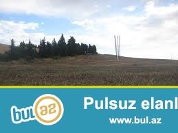 Yeni suraxani erazisi Buta Place geden yol butun kamunal xetler movcuddur etrafda yawayiw saheleri var.
