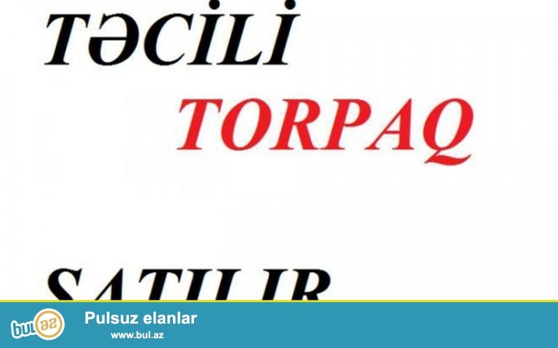 TORPAQ SATILIR ELETDE YOL KENARI-1 SOT-200 AZN- 055 7929119 -070 7918417