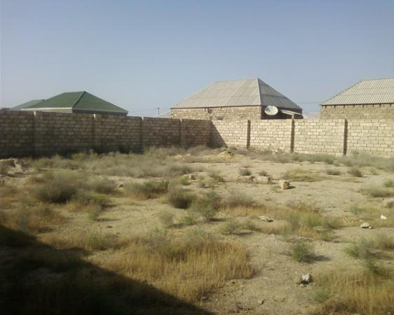 Bineqedi   rayonu   Novxani   yolunda     yoldan   100m     arali    3  daw   hasari   horulmuw      3  sot   torpaq  satilir...