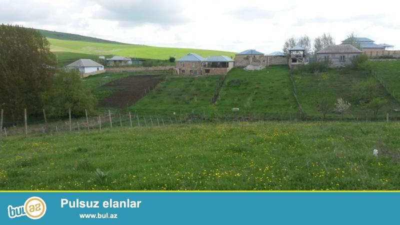 Şamaxı rayonunun Məlhəm kəndində, Şamaxı-Pirqulu yolundan 100 m aralıda 12 sot torpaq sahəsi satılır...