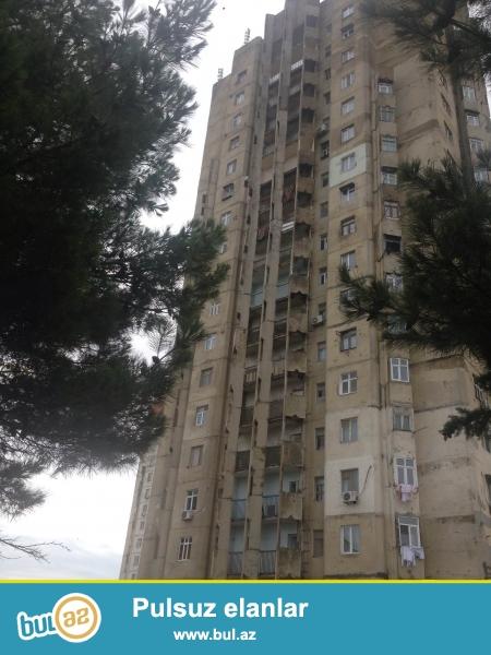 """Сдается 4-х комнатная квартира в 9 МКР-е, рядом с домом торжеств """"Тарлан""""..."""