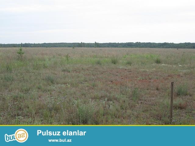 Suraxani rayonu,Yeni suraxani qesebesinde tam yasayis olan erazide 2...