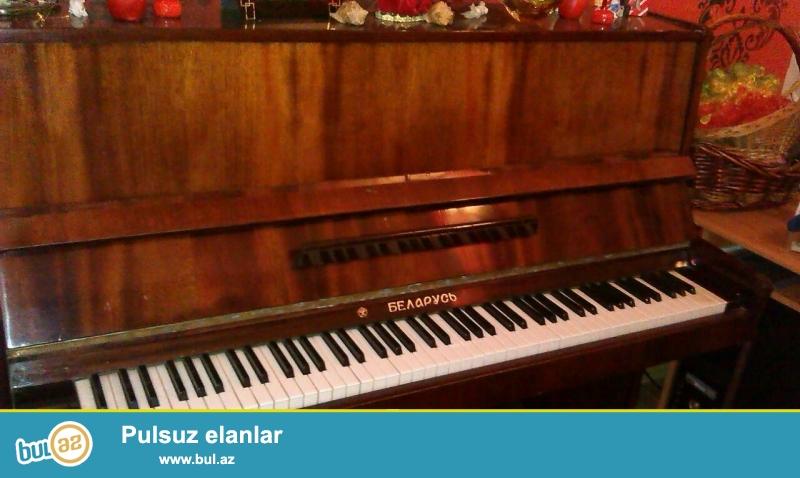 Lakli agac rengli Belarus pianinosu satiram. Ela veziyyetdedir...