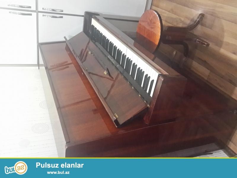 Qehveyi rengli Belarus pianinosu. Veziyyeti yaxshidi...