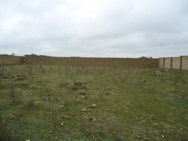 Mawtaga  Buzovna   yolunda   daw   hasarda   1  hektar   kupcali   torpaq   satilir...