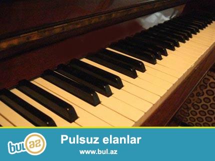 Her nov her reng pianino satilir